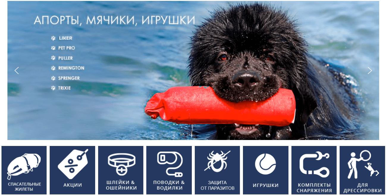 Как выбирать товары для собак?